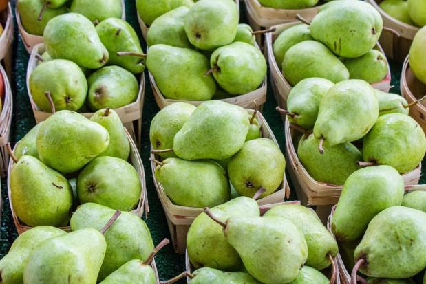 Dlaczego Belgowie porównują swój rynek gruszek do polskiego rynku jabłek?