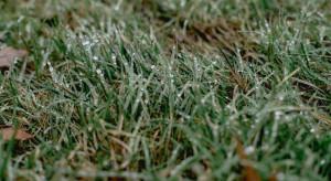 IMGW: możliwe przelotne opady śniegu i deszczu ze śniegiem