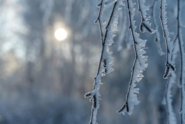 Prognoza pogody: przewidywane  miejscami przelotne opady śniegu i deszczu