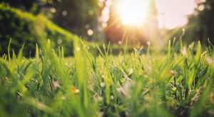 IMGW: w drugiej połowie tygodnia nastąpi ocieplenie
