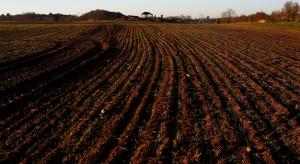 Rząd zajmie się wstrzymaniem sprzedaży państwowych nieruchomości rolnych