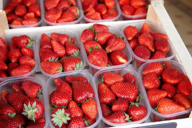 BelOrta sprzedaje pierwsze w tym sezonie belgijskie truskawki