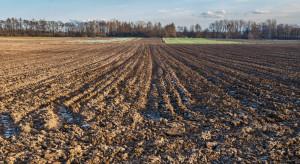 Rząd przyjął projekt ustawy o wstrzymaniu sprzedaży państwowej ziemi