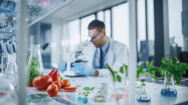 GMO - na co można uodpornić rośliny?