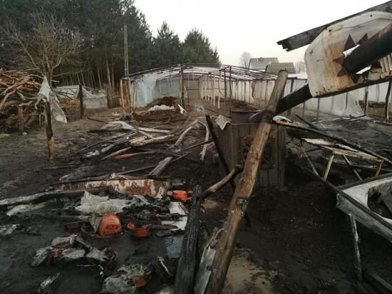 Świętokrzyskie: Pożar w gospodarstwie ogrodniczym. Spłonął dorobek życia