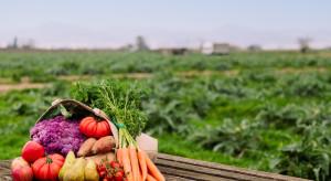 Producenci owoców i warzyw zyskają- wzrosły stawki upraw ekologicznych