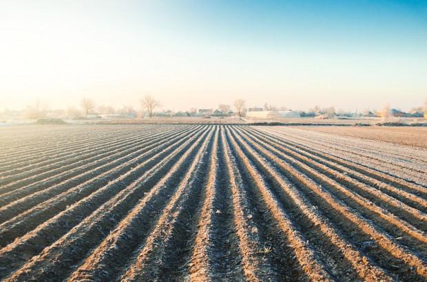 Sejmowa komisja za przedłużeniem zakazu sprzedaży państwowej ziemi rolnej