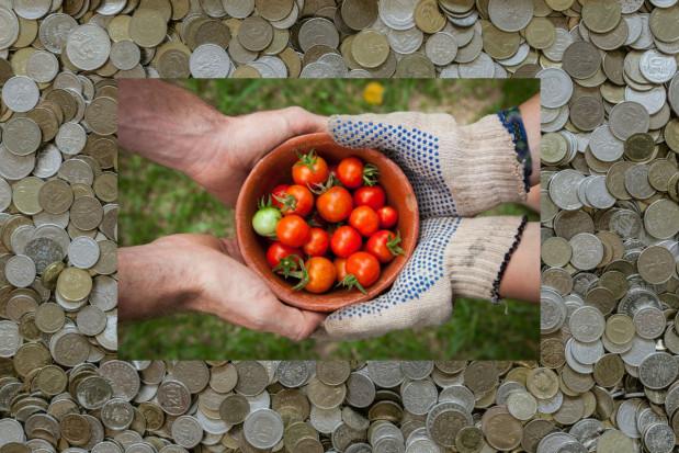1/5 środków KPO na rolnictwo i obszary wiejskie