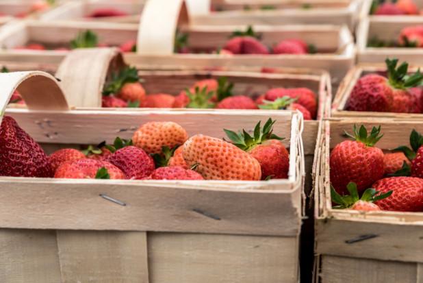 Łubianki - jakich cen można się spodziewać przed zbiorami truskawek?