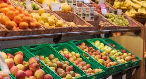 Niemiecki sezon jabłkowy – dobre ceny i podaż