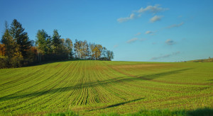 Ustawa o wstrzymaniu sprzedaży ziemi znowelizowana przez Sejm