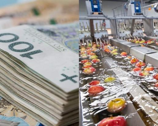 Pieniądze z KPO dla rolnictwa. W planach budowa min. zakładów przetwórczych