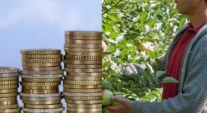 Kwota premii dla młodych rolników pozostanie bez zmian
