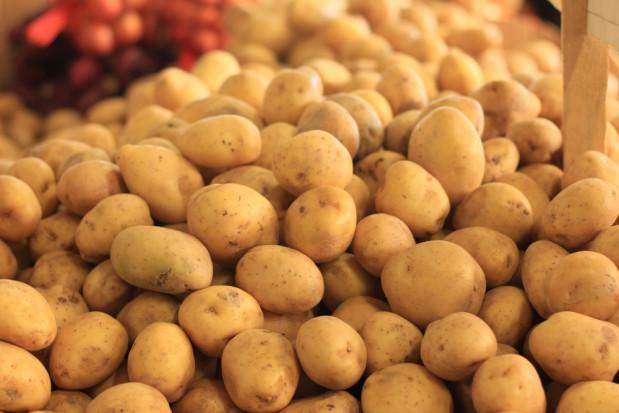 Dynamiczny wzrost cen skupu ziemniaków. Powodem niska dostępność