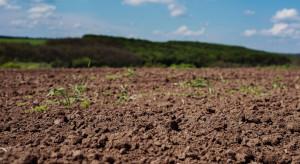 Ochrona bioróżnorodności gleby - temat ciągle aktualny