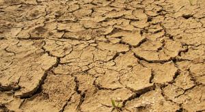 NIK: Brakuje spójnego planu zapobiegającego suszy rolniczej w kraju
