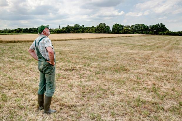 Wody Polskie: opracowaliśmy plan przeciwdziałania skutkom suszy