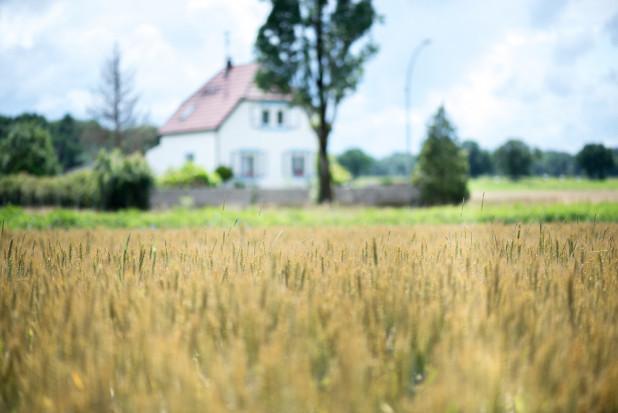 KRIR sprzeciwia się łatwemu odrolnieniu gruntów
