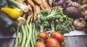 Niemcy: Produkcja warzyw na poziomie z roku ubiegłego