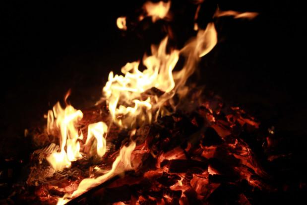 Strażacy: wypalanie traw nie użyźnia gleby, jedynie ją wyjaławia