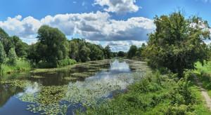 Ekohydrolog: oczyszczanie wód pochodzących z rolnictwa jest konieczne