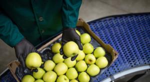 Eksport do Mongolii szansą dla polskich producentów owoców i warzyw?