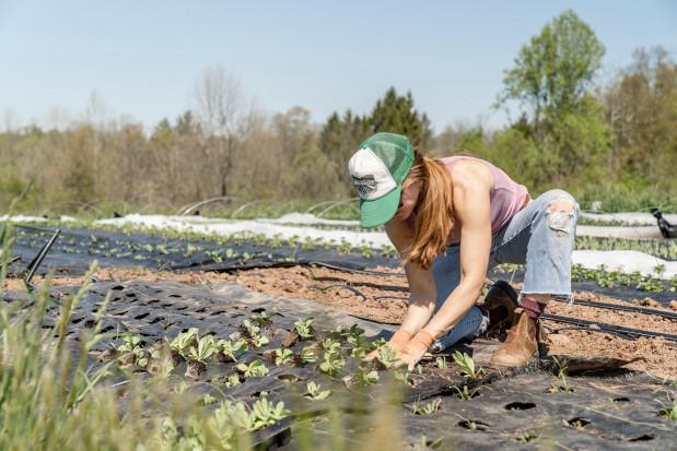 W Polsce jest coraz mniej gospodarstw rolnych, ale są one coraz większe