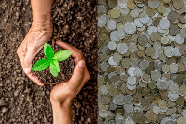Ubezpieczenia Pocztowe ruszają ze sprzedażą ubezpieczeń upraw z dopłatami