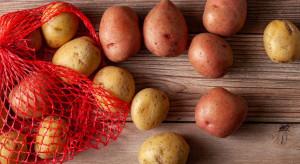 Ziemniaki podstawą kuchni regionalnej