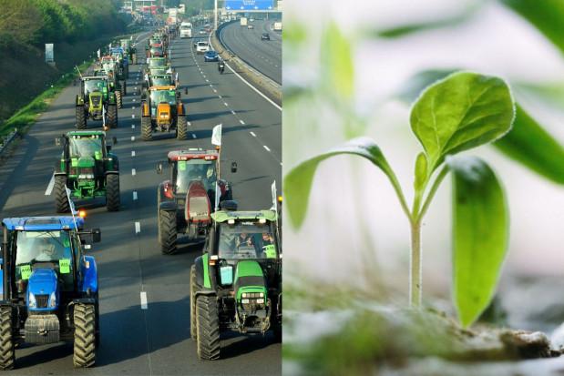 Francuscy rolnicy protestują przeciwko ekologicznej polityce rolnej UE