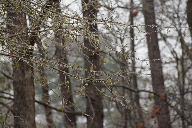 Pogoda: Śnieg i deszcz ze śniegiem; możliwe burze