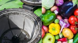 Pozostałościach pestycydów w żywności- najnowszy raport EFSA