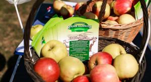 Rzeszów: Fundacja Rolnik Handluje rozdawała polskie jabłka
