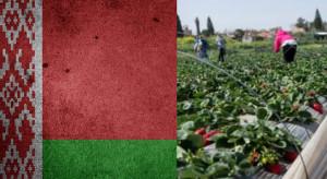 Wzrasta liczba Białorusinów w Polsce, najwięcej w woj. mazowieckim