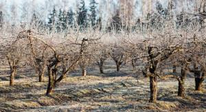 IMGW: Od wtorku powrót zimy