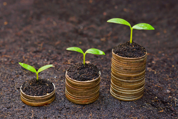 Sytuacja finansowa producentów jest trudna. MRiRW uruchomi kredyty preferencyjne?