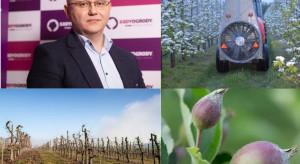 Projekt Agrobalans - jak spełnić założenia Zielonego Ładu w sadzie?