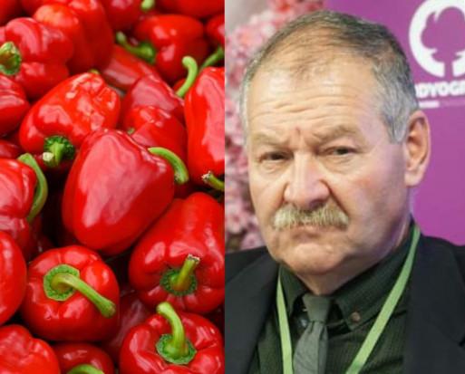 Mirosław Łuska: Niskie temperatury uderzają w producentów papryki