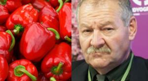 Niskie temperatury uderzają w polskich producentów papryki