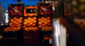 Jabłka, truskawki i borówki w promocji w Lidlu, młoda kapusta w Biedronce