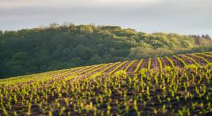 Senat za przedłużeniem zakazu sprzedaży państwowej ziemi o 5 lat