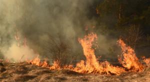 Wypalanie traw jedną z przyczyn pożarów w Polsce