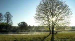 IMGW: Na razie bez zmian w pogodzie, weekend przyniesie ciepło