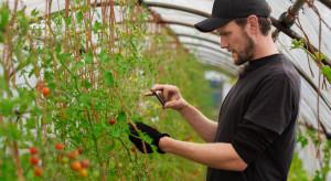 Inwestycja w technologię 5G - jakie korzyści dla rolnictwa?