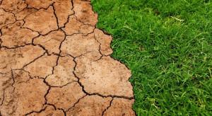 Śnieżna zima poprawiła wilgotność gleby