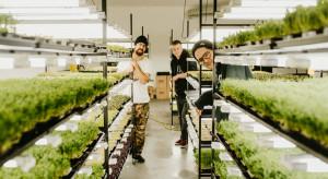 Sie.Jemy rozwija technologię uprawową ziół