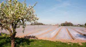 GiełdaRolna.pl: Kup niezbędne sprzęty i środki przy produkcji wiosennej