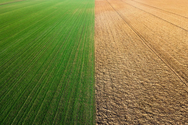 30 kwietnia wchodzą przepisy przedłużające sprzedaż państwowej ziemi
