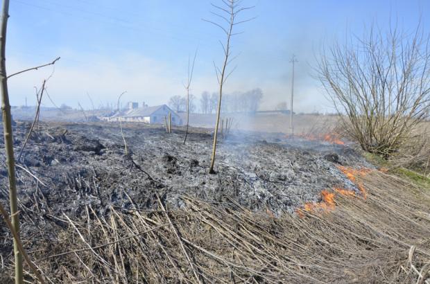 Małopolskie: Mężczyzna podpalił łąkę, nie zdążył uciec przed ogniem