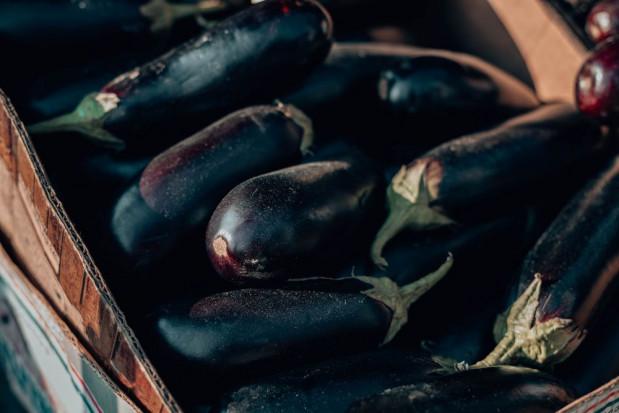 Hiszpania: Nowy rekord w eksporcie bakłażanów